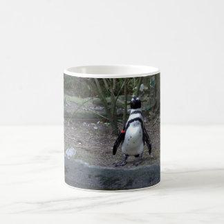 Pingüino africano taza