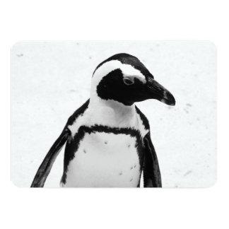 """Pingüino blanco y negro invitación 5"""" x 7"""""""