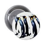 Pingüino Botones