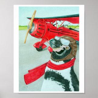 Pingüino con un avión póster