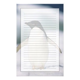 Pingüino de Adelie, primer Papelería