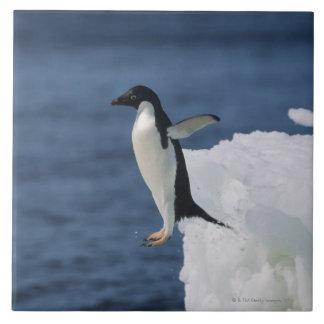Pingüino de Adelie que salta del iceberg Azulejo Cuadrado Grande