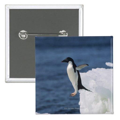 Pingüino de Adelie que salta del iceberg Pins