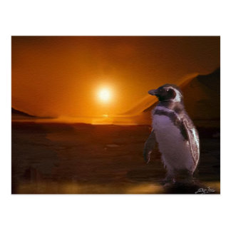 Pingüino de Adelie y puesta del sol antártica Tarjetas Postales