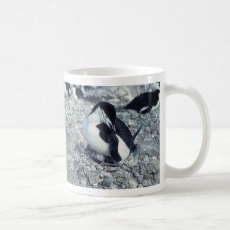 Pingüino de Chinstrap Taza