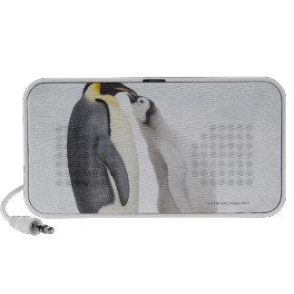 Pingüino de emperador (forsteri) del Aptenodytes,  iPhone Altavoz