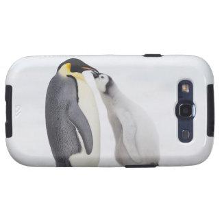 Pingüino de emperador (forsteri) del Aptenodytes,  Samsung Galaxy SIII Funda