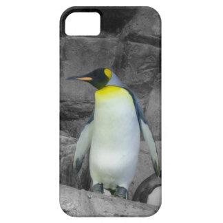 Pingüino de emperador iPhone 5 fundas
