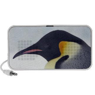 Pingüino de emperador, isla de la colina de la nie iPhone altavoz
