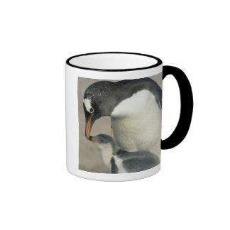 Pingüino de Gentoo, (Pygoscelis Papua), adulto Taza De Dos Colores