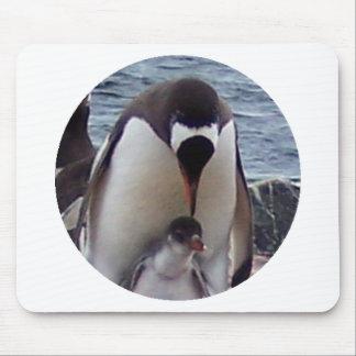 Pingüino de la mamá y del bebé tapete de raton