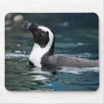 Pingüino de la natación alfombrillas de ratón