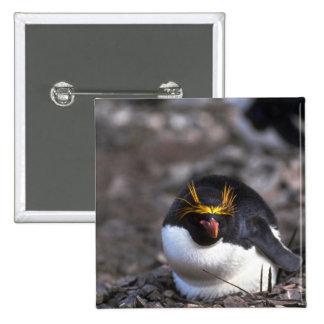 Pingüino de los macarrones que se sienta en el pin
