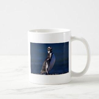 Pingüino de Magellanic Taza