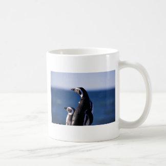 Pingüino de Magellanic Tazas