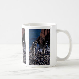 Pingüino de Magellanic Tazas De Café