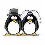 Pingüino de novia y del novio - scuplture de la fo escultura fotografica