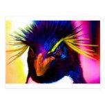 Pingüino de Rockhopper del arco iris Tarjetas Postales