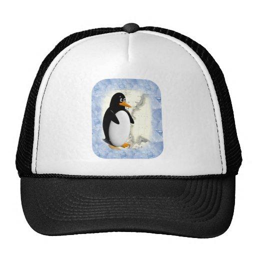 Pingüino de South Pole Gorras De Camionero