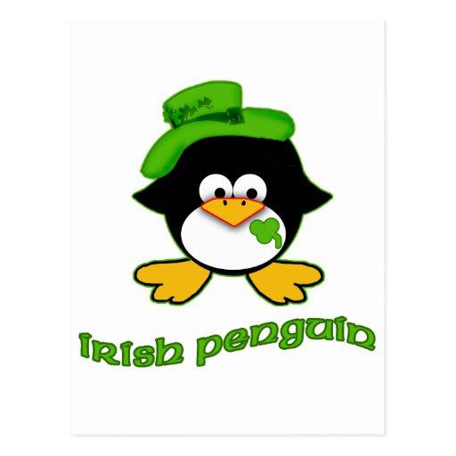 Pingüino del irlandés del bebé tarjetas postales