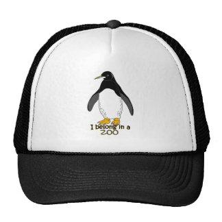 Pingüino del parque zoológico gorras de camionero
