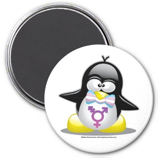 Pingüino del transexual iman