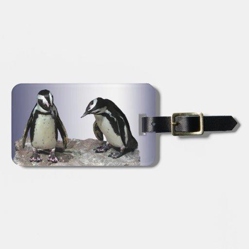 Pingüino Etiqueta Para Equipaje