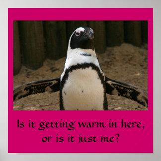 Pingüino menopáusico póster