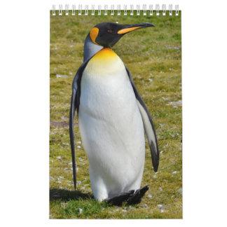 Pingüino-Pedia: Pingüinos del mundo Calendarios De Pared