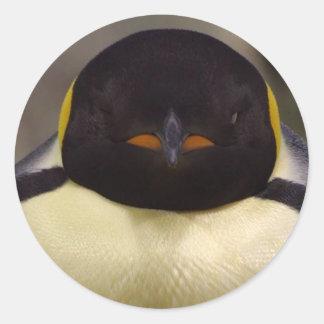 Pingüino Pegatina Redonda