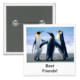 pingüino pin cuadrado