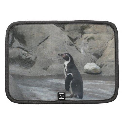 Pingüino Planificadores