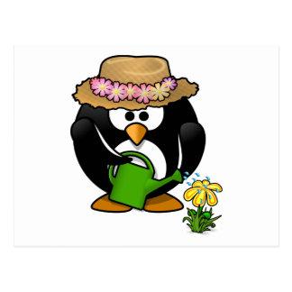 Pingüino que cultiva un huerto tarjetas postales