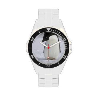 Pingüino Relojes De Pulsera