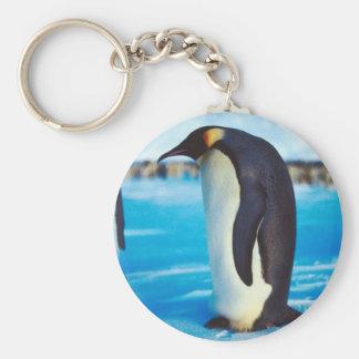 Pingüino solitario llavero redondo tipo pin