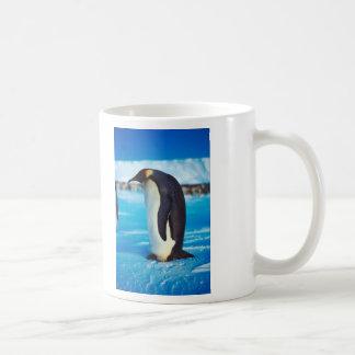Pingüino solitario taza de café