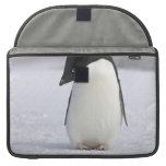"""Pingüino solo 15"""" manga de MacBook Funda Para Macbook Pro"""