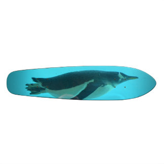 Pingüino subacuático tablas de skate