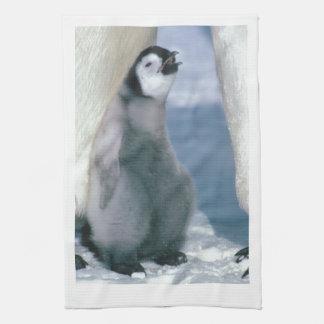 Pingüino Toalla De Mano