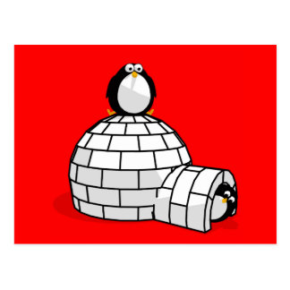 Pingüino y postal del iglú
