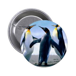 Pingüinos Pin