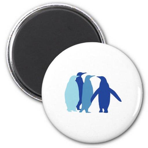 Pingüinos azules imán redondo 5 cm