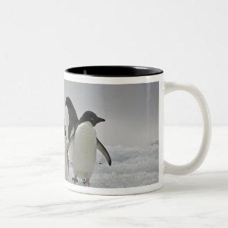 Pingüinos de Adelie en flujos del hielo Taza Dos Tonos