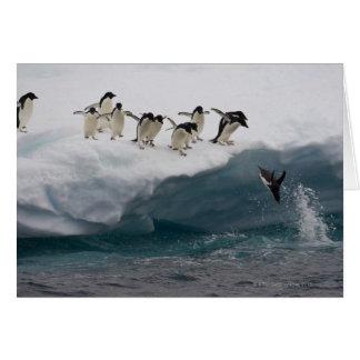 Pingüinos de Adelie que se zambullen en el mar Pau Tarjeta De Felicitación