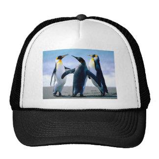 Pingüinos de Alaska Gorros Bordados