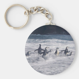 Pingüinos de Chinstrap en la resaca de la playa Llavero Redondo Tipo Pin