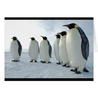 Pingüinos de emperador felicitación