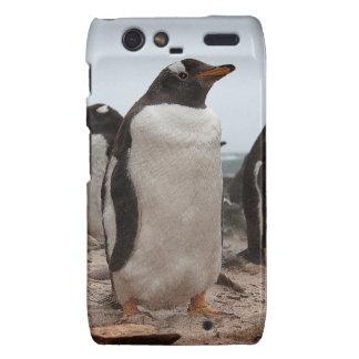 Pingüinos de Gentoo Motorola Droid RAZR Fundas
