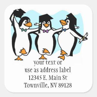 Pingüinos de graduación del dibujo animado lindo calcomanías cuadradases