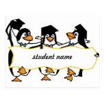 Pingüinos de graduación w/Banner del dibujo animad Postales